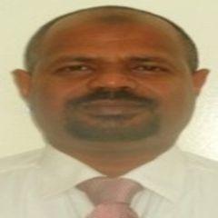 Mohamed Galal Hussein Ahmed Mohamed