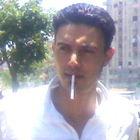 mahmoud alashry