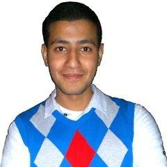 mohamed Aly Hussein sakr