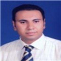 Arafa Ashour Hussien Aly Hussien Aly...