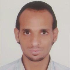 Mahmoud alaaeldin mohamed Elsayyad