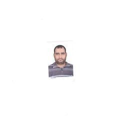 Amr Nageeb