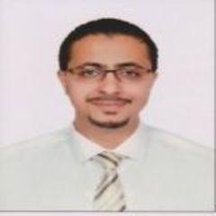 Karim Elmenshawi