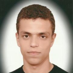 farid Abdel Tawab Abu alQasim