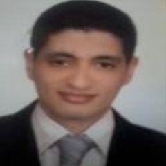 Aly Abd elrahman Hassan Fayed