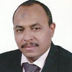 mohsen Mohamed Saad Eldin Qasim Qasi...