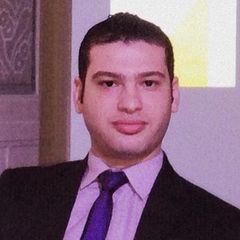 Mahmoud Fawzy Mohamed Hegazy