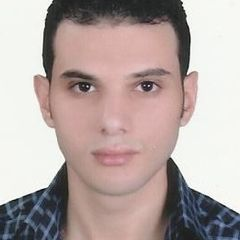 mohamed elshoura